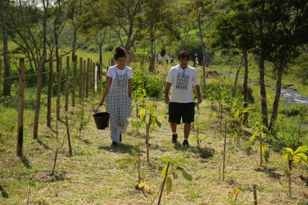 One Tree Planted-51